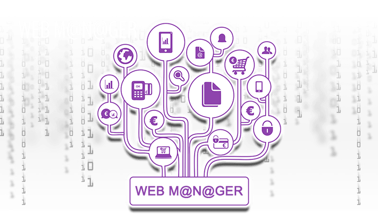 WEB MANAGER Software